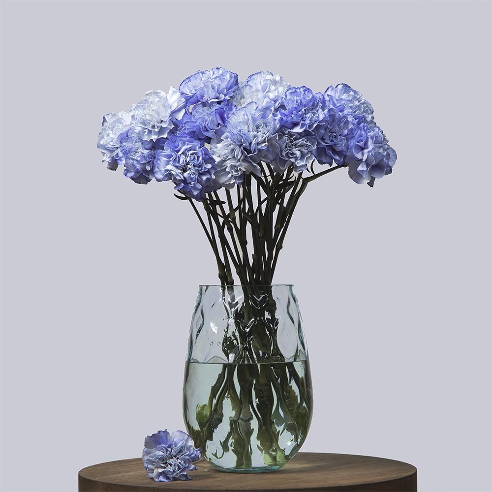 Гвоздика голубая - купить цветы в Санкт Петербурге