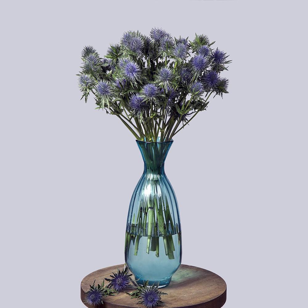 Эрингиум - купить цветы в Санкт Петербурге