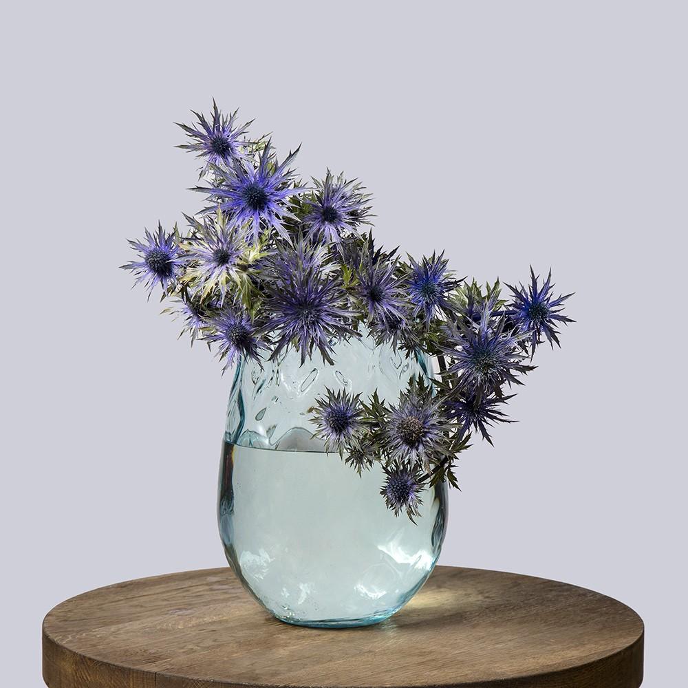 Эрингиум игольчатый - купить цветы в Санкт Петербурге