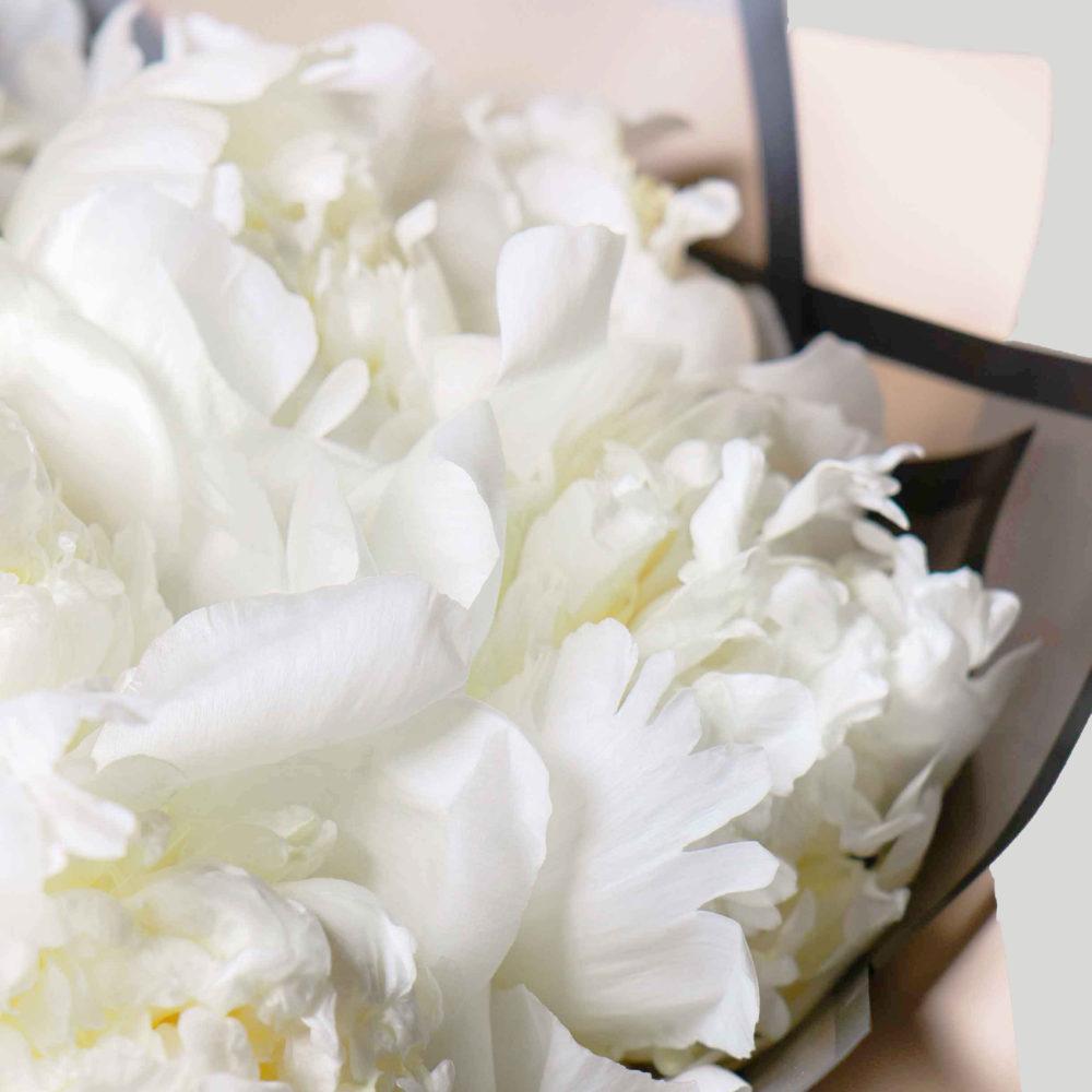 Моно букет из белых пионов №3 - цветы в Спб