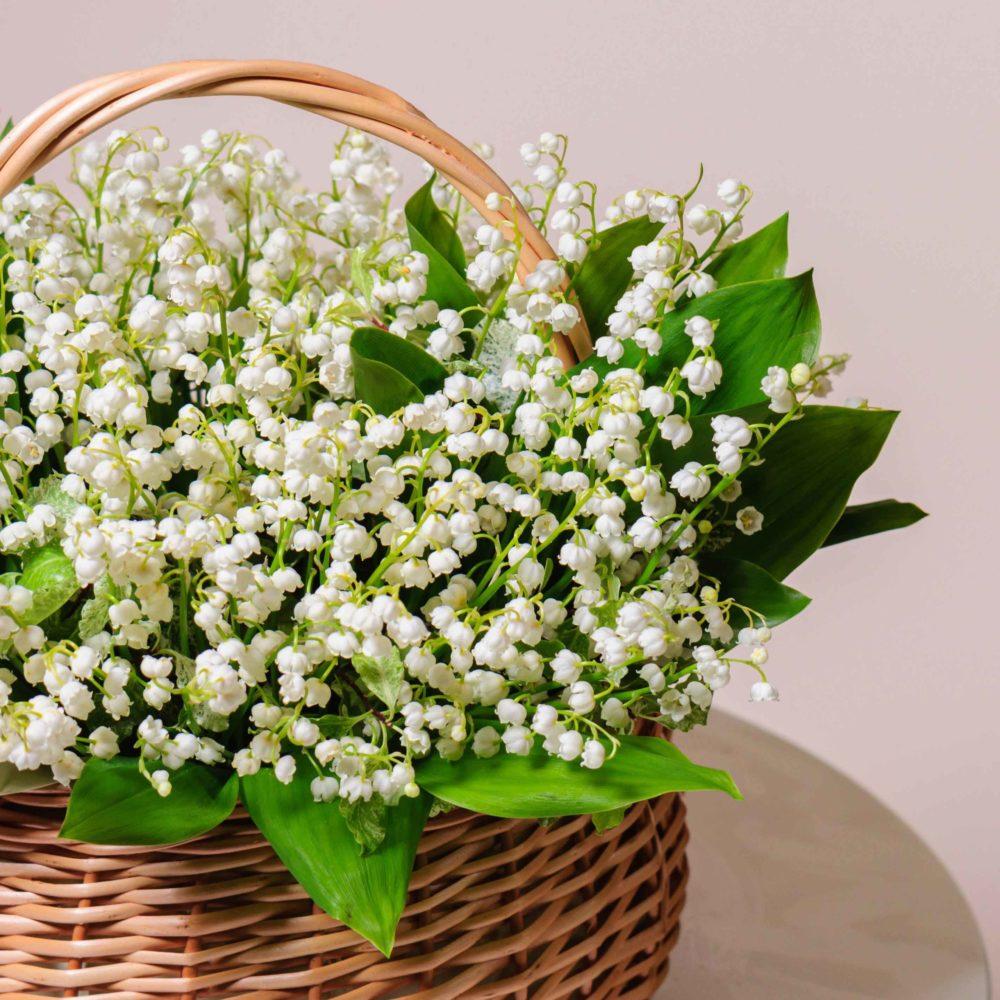 Ландыши - цветы в Спб
