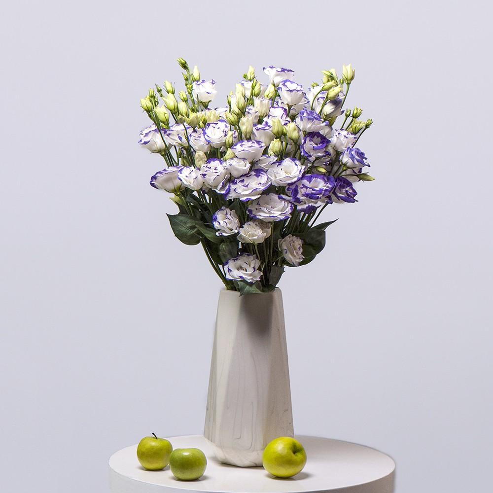 Лизиантус фиолетово-белый - купить цветы в Санкт Петербурге