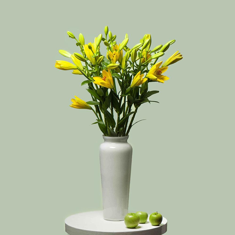 Лилия жёлтая - купить цветы в Санкт Петербурге