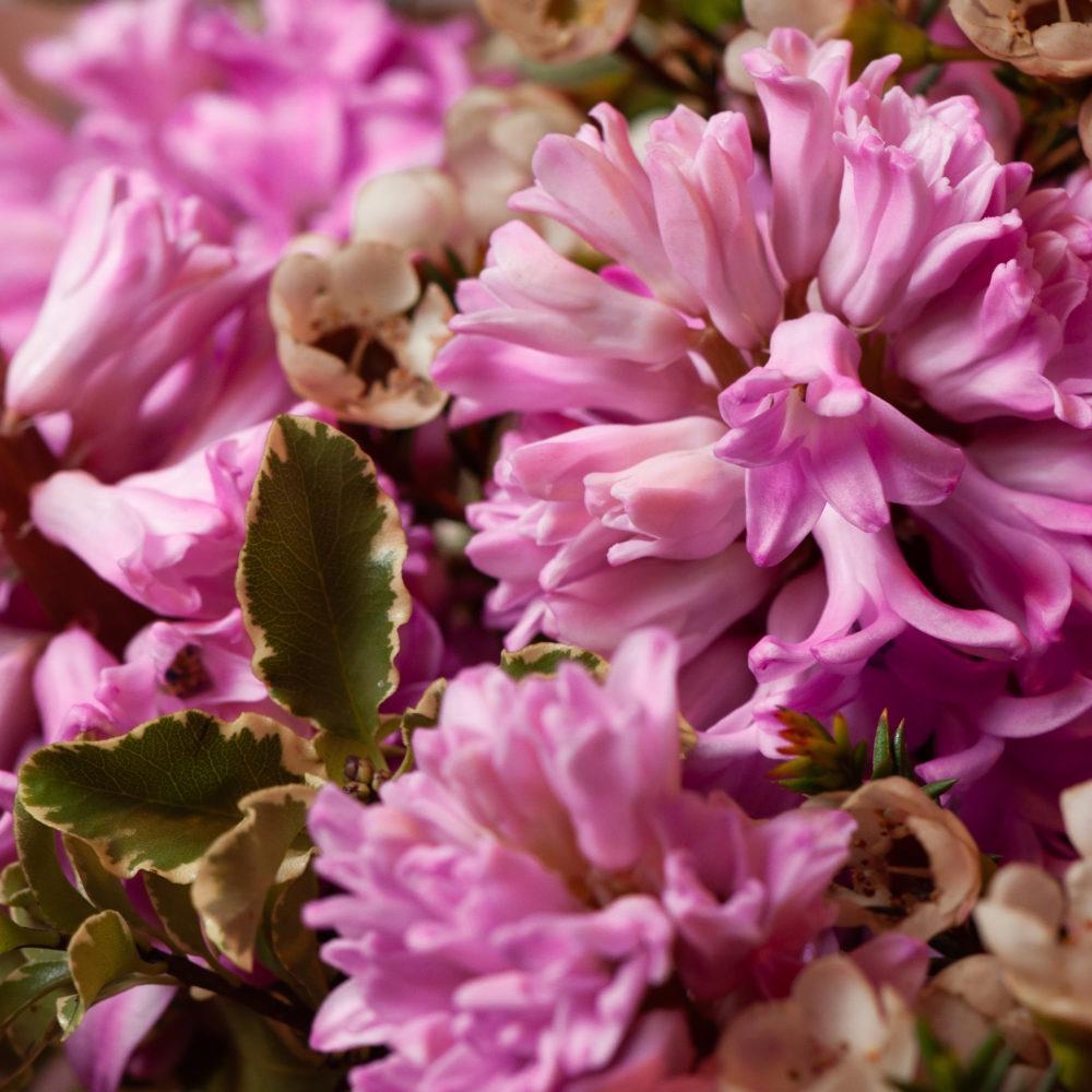 Букет с розовыми гиацинтами и ваксфлауэром №9 - цветы в Спб