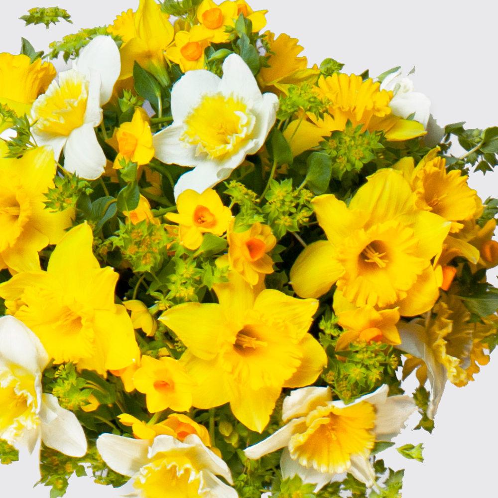 Монобукет с нарциссами №13 - цветы в Спб