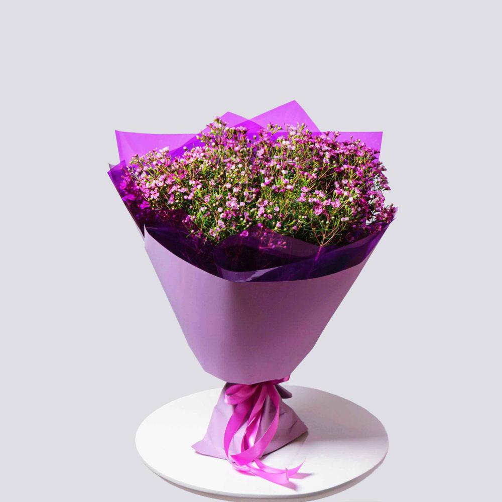 Монобукет из ваксфлауэра №4 - купить цветы в Санкт Петербурге